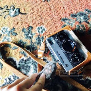 猫,カメラ,肉球,クラシックカメラ,ハンドサイン,ジェスチャー,にゃんこサイン