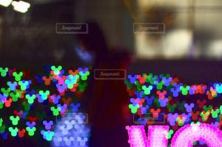 近くの花のアップの写真・画像素材[781429]