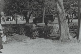 公園の人々 のグループの写真・画像素材[819646]