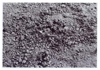 岩のビーチの写真・画像素材[819653]