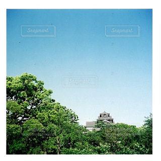 空,屋外,緑,樹木,熊本,熊本城,フィルム,地震