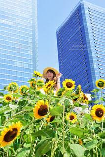 建物の前に黄色の花の写真・画像素材[888531]