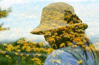 近くの花のアップの写真・画像素材[888541]