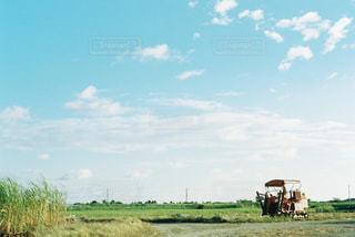 自然,空,雲,青,沖縄,旅行,フィルム,畑,波照間島,日中