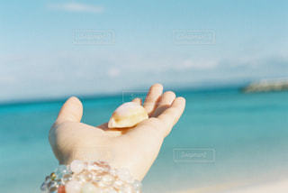 水のガラスを持っている手の写真・画像素材[903535]