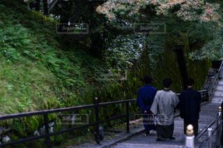 男性,清水寺,屋外,京都,階段,樹木,着物