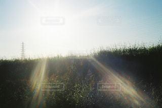 空に虹の写真・画像素材[915966]