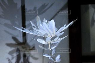 近くのガラス花瓶がテーブルの上に座って花でいっぱいの写真・画像素材[916125]