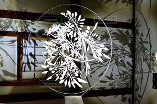 植物の花の花瓶 - No.916132