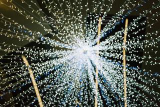 空に花火のグループの写真・画像素材[926655]