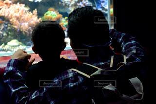 男性,群衆,水族館,子供,シルエット,人物,人,水槽,父,子,お父さん,親父