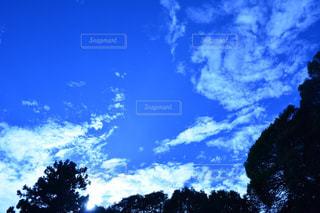 空を飛んでいる人の写真・画像素材[975456]
