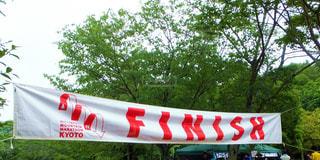 森に赤と白の平面駐車 - No.986990