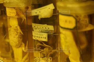 ガラスの陳列ケースの写真・画像素材[995259]