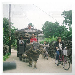 自転車の後ろに乗っている人のグループの写真・画像素材[1022495]