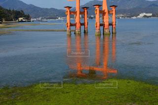 水の体の上の橋の写真・画像素材[1022533]