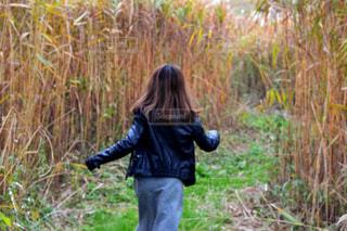 草の中に立っている人の写真・画像素材[1035703]