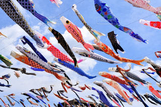 空に別の着色された凧のグループの写真・画像素材[1105407]