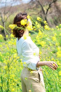 黄色の花の人 - No.1121801