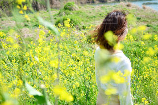 フィールドに黄色の花を着て少年 - No.1121809