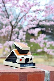テーブルの上に座って電車ケーキの写真・画像素材[1153820]