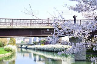 水の体の上を橋を渡る列車の写真・画像素材[1153997]