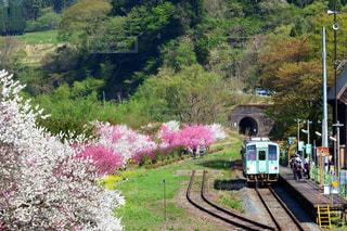 下り列車を走行する列車は森の近く追跡します。の写真・画像素材[1154036]