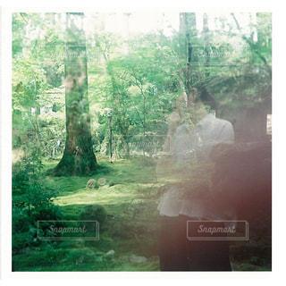 森のビュー - No.1160121