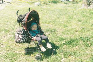 草の中に立っている小さな男の子の写真・画像素材[1181619]
