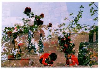 花の花瓶とテーブルに座っている人々 のグループの写真・画像素材[1181650]
