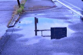 雨,傘,屋外,水たまり,標識,紫陽花,道,歩道,リフレクション,雨上がり,梅雨,アスファルト