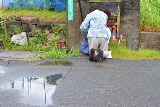 雨,傘,屋外,道路,水たまり,草,紫陽花,人物,道,人,歩道,祈り,雨上がり,梅雨,お参り,老人,縁石