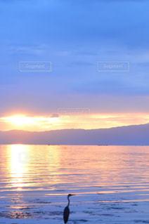水の体に沈む夕日の写真・画像素材[1232087]