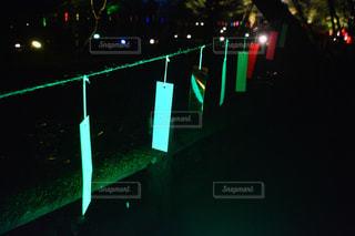 夜青信号の写真・画像素材[1296261]