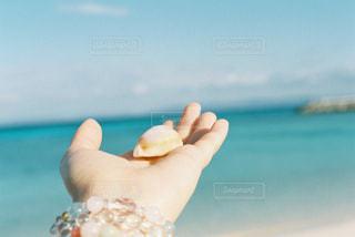水のガラスを持っている手の写真・画像素材[1357454]