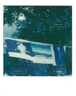 カメラの写真・画像素材[1421393]