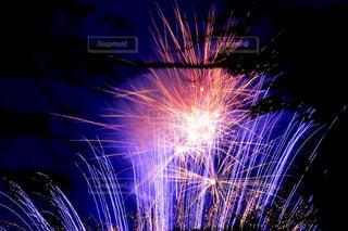 夜空の花火の写真・画像素材[1450342]