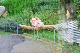 女性,自然,公園,花,森林,屋外,ピンク,花束,ボーダー,帽子,バラ,景色,鮮やか,女の子,草,ベレー帽,薔薇,樹木,スカート,布,人,顔,装飾,ポーズ,明るい,新鮮,植物園,ピンク色,桃色,pink,草木,ガーデン,pink色