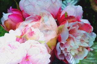 女性,花,屋外,ピンク,花束,ボーダー,スマイル,バラ,景色,鮮やか,女の子,草,薔薇,樹木,スカート,布,人物,人,笑顔,顔,装飾,ポーズ,明るい,新鮮,目,植物園,ピンク色,桃色,pink,草木,ガーデン,pink色