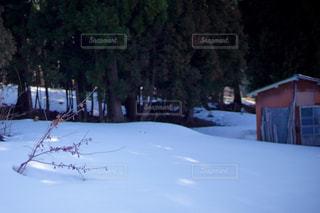 雪に覆われた斜面をスキーに乗る人の写真・画像素材[1852871]
