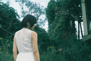 ドレスを着た女性の写真・画像素材[2355483]