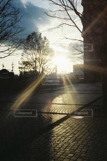 空,建物,夕日,屋外,太陽,青空,夕暮れ,道路,日光,影,光,樹木,道,煉瓦,マジックアワー,シャドウ,日中,クラウド