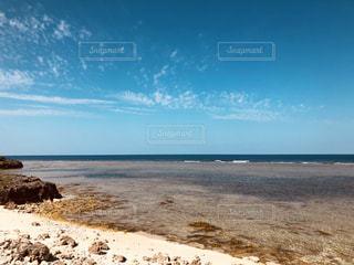 粟国島の写真・画像素材[1097112]
