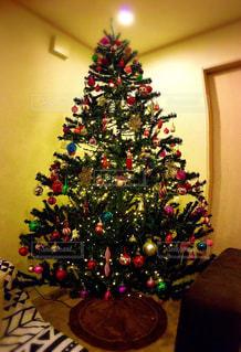 クリスマスの写真・画像素材[264755]