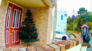 クリスマスの写真・画像素材[264767]