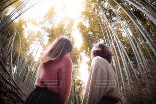 京都嵐山の写真・画像素材[849126]