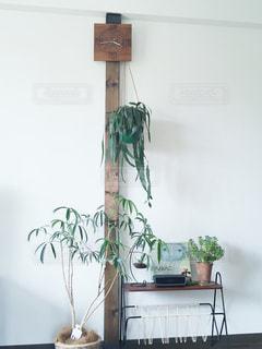 インテリア,時計,柱,絵本,観葉植物,グリーン