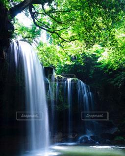 背景の木と滝の写真・画像素材[854066]