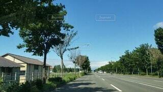 風景,空,屋外,太陽,雲,道路,北海道,家,樹木,道,車窓,通り,草木,車窓から,街路灯