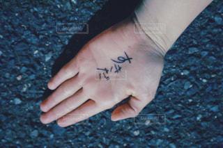 手のひら - No.392417